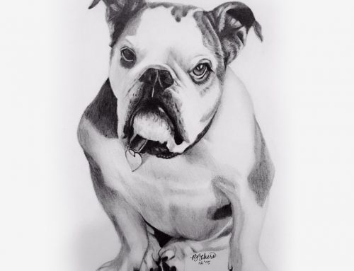 Daisy's Pencil Portrait